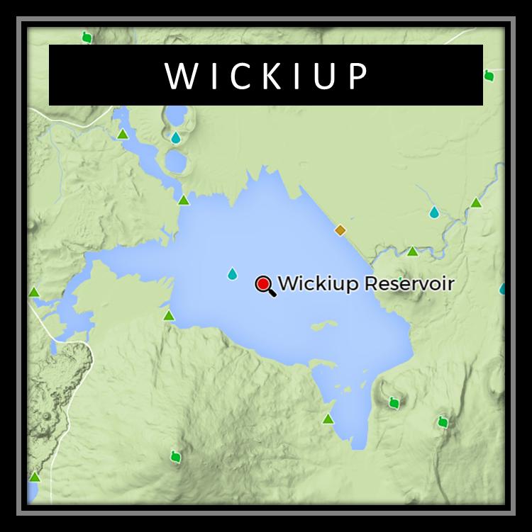 Wickiup Kokanee Derby